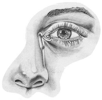 vie lacrimali occhio